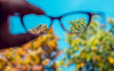 Blind spots in executive coaching